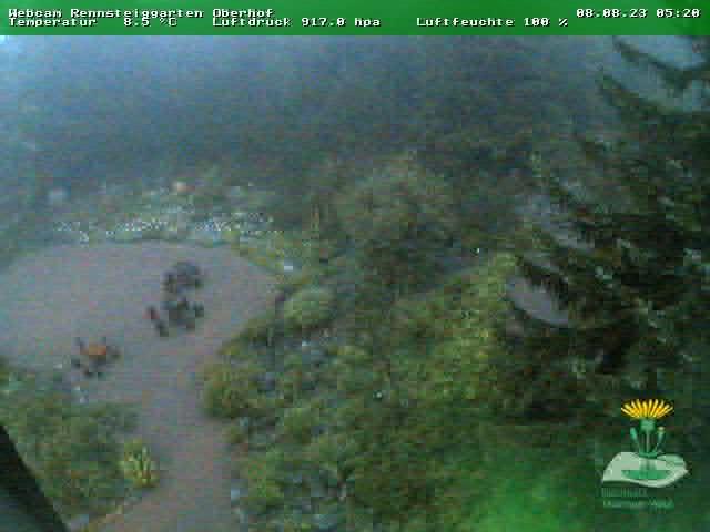 Webcam Skigebied Oberhof Rennsteiggarten - Thüringer Woud